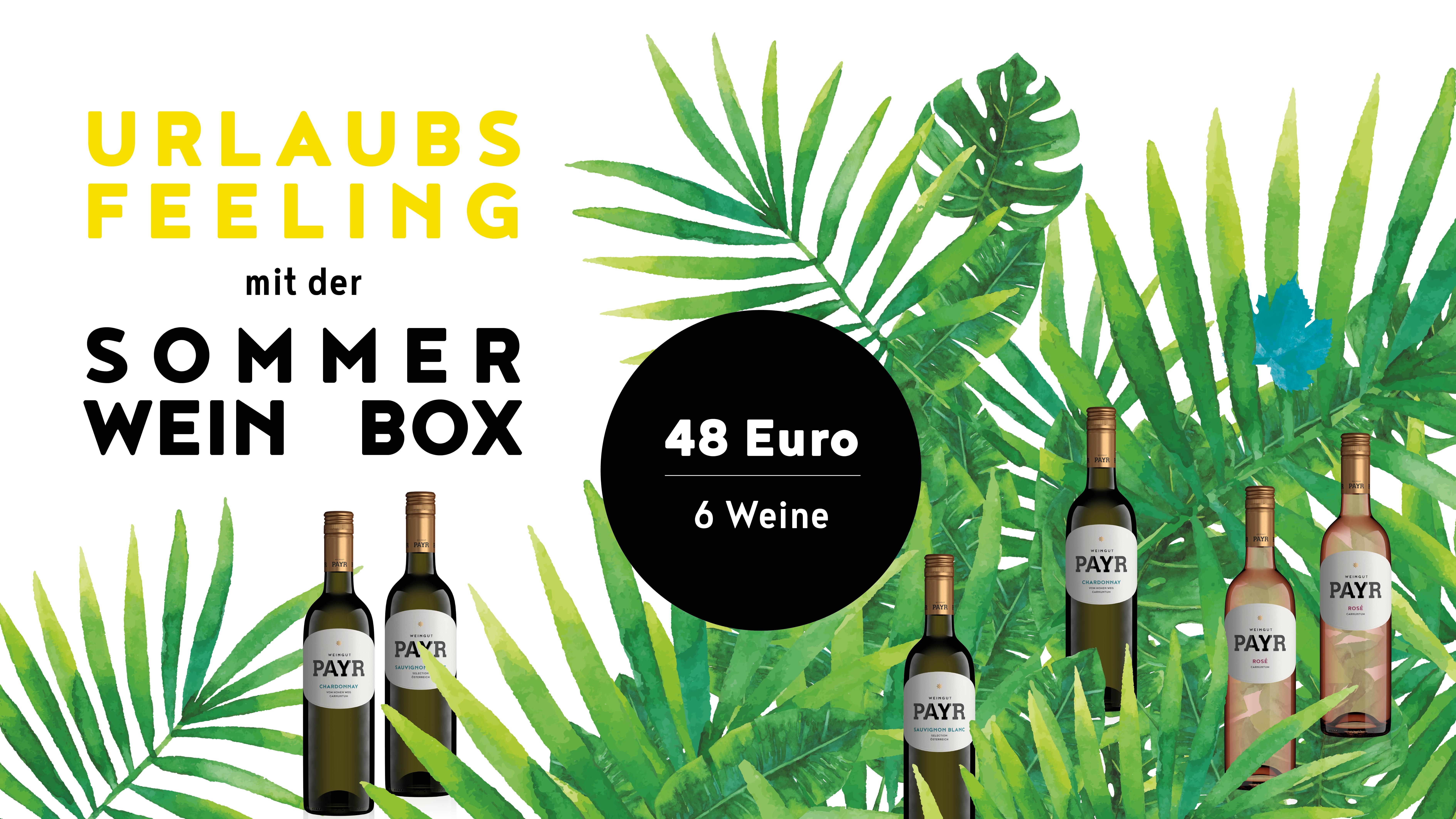 Sommer Wein Box Website